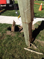 Damage to the base of a wood hydro pole.