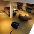 What to do if your basement has flooded